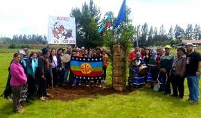 Comunidades Mapuche reivindican terrenos donde pretenden imponer media luna de rodeo en Padre Las Casas