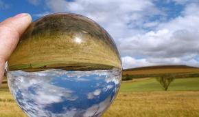 Ecología hoy: una apuesta por la vida