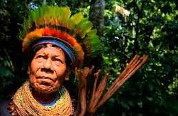 El Yagé, medicina tradicional y patrimonio cultural de comunidades indígenas o un alucinógeno para occidentalizar?